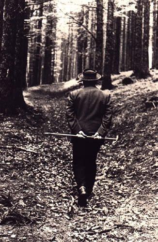 Heidegger, caminhando por sua Floresta Negra de silêncio e alheiamento