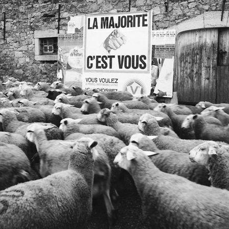 la_majorite_cest_vous
